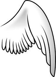 Image result for cartoon bird wings