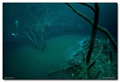 """While underwater water doesn't seem possible, the """"river"""" is actually a briny mix of salt water and hydrogen sulfide. It's much more dense than regular salt water, so it sinks to the bottom and forms a distinct separation that acts and flows like a river."""