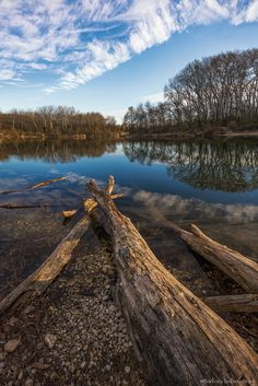 Wood -
