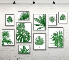 Green decor green wall hanging tropical art print palm leaf watercolor print leaves print nature art print set of 10 green wall art Plant Painting, Plant Art, Plant Decor, Tropical Home Decor, Tropical Decor, Tropical Furniture, Tropical Interior, Tropical Bedrooms, Tropical Colors