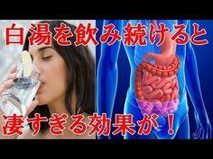 【衝撃】タバコよりも体に悪い!医者が絶対に口にしない危険な食べ物がコチラ!今すぐ確認【健康雑学】 - YouTube