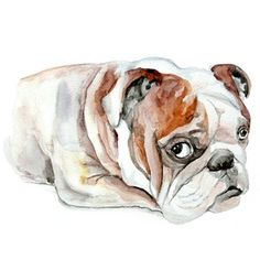 13x19 Custom Pets Portrait original watercolor painting cust ...