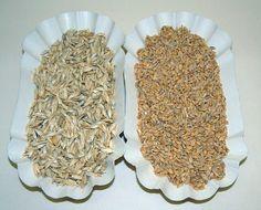 Il chicco del farro ha una quota superiore al frumento, di carboidrati complessi, proteine, fibre, vitamine del complesso B e sali minerali.