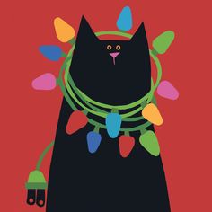 Black cat with Christmas lights around his neck!