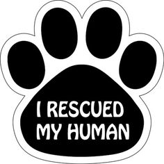 I Rescued My Human Paw Print Car Refrigerator Magnet 5 1/2' ** Want additional info? Click on the image. (This is an affiliate link and I receive a commission for the sales)