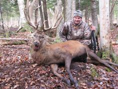 Call now for a great hunt in Maine...207-356-3582