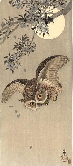downward owl by Koson Naga Oban