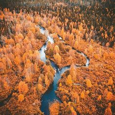 Photos of Finland 🇫🇮🇫🇮🇫🇮🇫🇮 ( Four Seasons, Finland, Cool Words, Photo Credit, Blessed, Profile, Autumn, Photo And Video, Country