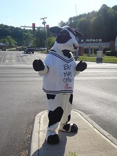 Not even gonna lie- I've been this cow before in Texas.