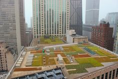 Rooftop gardens create dramatic beautiful geometry in downtown Chicago with city skyscrapers. Photo by Michele of Hello Lovely Studio