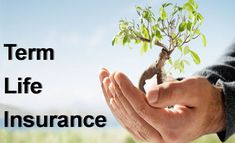 Find best life india plans from India's best insurance companies in all major cities Noida, Gurgaon, Bangalore (Bengaluru), Pune (Poona), Delhi & Mumbai.