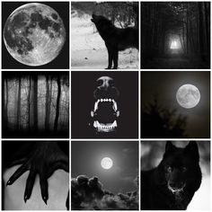"""Aesthetic for a black wolf/werewolf who likes darkness and the full moon for anon! Vampires And Werewolves, She Wolf, Aesthetic Collage, Character Aesthetic, Mythical Creatures, Werewolf, Spirit Animal, Aesthetic Wallpapers, Character Inspiration"