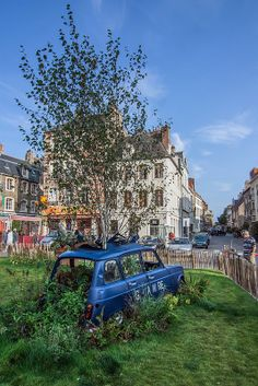 Renault 4 - Car and tree, Boulogne sur Mer, France - www.gdecooman.fr -  - Photo by Guilhem DE COMAAN . http://www.gdecooman.fr/ https://www.flickr.com/photos/paslematin/ http://www.pinterest.com/gdcfr/