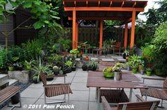 Foliage fantasia in Portland's Danger Garden   Digging