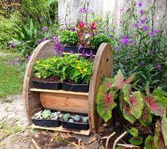 carretel jardin