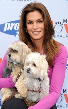 Cindy Crawford and her pups Sugar and Widget For supplies fit for any pet celeb visit wooftown.com