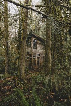 """littlewickedthingsx: """"Cabin in the Woods by alyshapainter on Flickr. """" Haus Am See, Creepy Houses, Off Grid Cabin, Forest Cabin, Wild Forest, Witch House, Cabins And Cottages, Cabin Homes, Cabins In The Woods"""