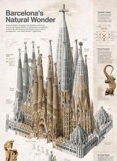 Temple of the Sagrada familia, Barcelona, by Antoni Gaudi Gothic Architecture, Amazing Architecture, Interior Architecture, Architecture Organique, Art Nouveau, Antonio Gaudi, Modernisme, Kirchen, Art Gallery