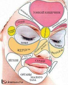 Решил поделиться ��☝️��может кому то будет интересно��а вообще в большинстве случаев совпадает, так что обратите внимание❗️#вечером#красота#нетпрыщам#вечнаямолодость#красотахабаровск#хабаровск#косметологхабаровск#чисткалицахабаровск#dermatology#cosmetology#doctor#khv27 http://tipsrazzi.com/ipost/1510935686915870364/?code=BT37ACBFM6c