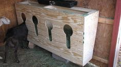 key hole feed system, great for keeping goats, sheep etc from fighting at the feeder.