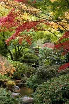 Picture of Shrine in Japanese garden, Portland, Oregon stock photo, images and stock photography. Japanese Garden Style, Portland Japanese Garden, Japanese Gardens, Modern Gardens, Small Gardens, Beautiful Landscapes, Beautiful Gardens, Japan Garden, Garden Pictures