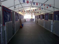 Olympic-stables-team GB