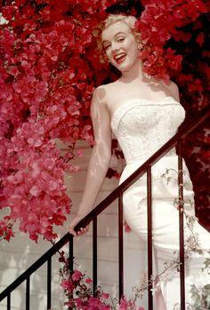 Marilyn Monroe, 1951. Photograph by Don Ornitz.