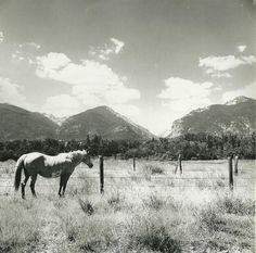 Blodgett Canyon, Bitterroot Valley, Montana