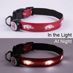 Arkansas Razorbacks Lighted Dog Collar, FBPP0000012979