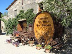 Fattoria San Donato, San Gimignano, Tuscany. Italy. September 2012.