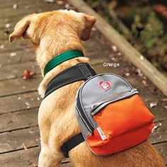 """ClassyRuff Backpack for Dogs - Dog backpack perfect for letting your """"classy"""" dog carry his gear Dog Accesories, Pet Accessories, Dog Backpack, Crazy Dog Lady, Animal Fashion, Dog Coats, Service Dogs, Pet Clothes, Dog Mom"""