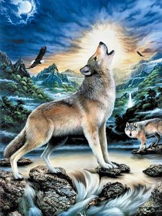Full Diamond embroidery animal diamond mosaic picture of rhinestones diy diamond painting wolf eagle Art cross-stitch kits Beautiful Wolves, Animals Beautiful, Cute Animals, Wolf Spirit, Spirit Animal, Wolf Pictures, Animal Pictures, Wolf Craft, Wolf Artwork