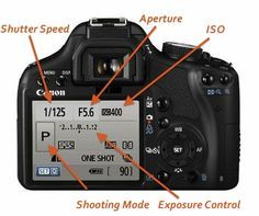 learn hoe to use a manual mode on a DSLR camera @Halle Cottis @ Whole Lifestyle Nutrition