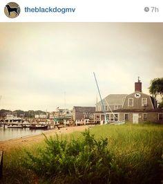 Black Dog Tavern Nantucket