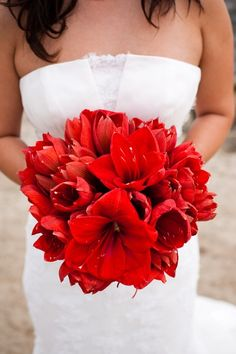 These flowers are perfect for a winter wedding!