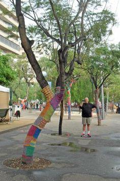 Znalezione obrazy dla zapytania santa cruz de tenerife plaza de españa trees dressed