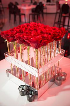 Red Carpet Party, Red Carpet Theme Party, Mitzvah Ideas, Mitzvah Themes, Party Decorations, Event Decorations, Party Lighting, Roses, Mitzvah Logo, Mitzvah Party, Miami Events, Miami Party, Centerpieces, Roses, Party Lighting, Mitzvah Decorations, Rose Centerpieces