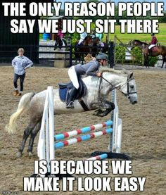 Equine Humor - Horses Funny - Funny Horse Meme - - Amen to that! The post Equine Humor appeared first on Gag Dad. Funny Horse Memes, Funny Horse Pictures, Funny Animal Jokes, Funny Horses, Cute Horses, Pretty Horses, Horse Love, Horse Girl, Funny Images