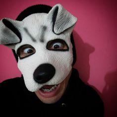 """""""Todas as pessoas GRANDES foram um dia crianças. Mas poucas se lembram disso ."""" Pequeno principe/Antoine de Sant  #ysto79 #isto79 #dog #dogclown #curitibacult #criança #brasil  #tbcnacional #mascara http://ameritrustshield.com/ipost/1541553732722169115/?code=BVksvPRFRUb"""