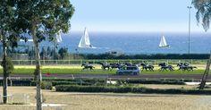 L'Hippodrome de la Côte d'Azur, avec vue mer !