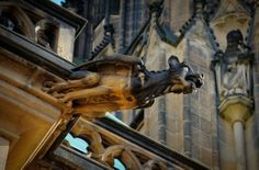Going to Prague and not going to the Prague Castle and the St. Vitus Cathedral is hard. Masonry Wall, Prague Czech Republic, Prague Castle, Stone Carving, Roads, Adventure Travel, Cathedral, Lion Sculpture, Statue