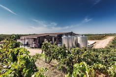 """São Miguel Wines - Casa Agrícola Alexandre Relvas - #Winery.  #Alentejo"""" book."""