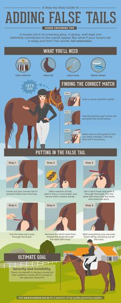 How to add false tails to your horse. #horse