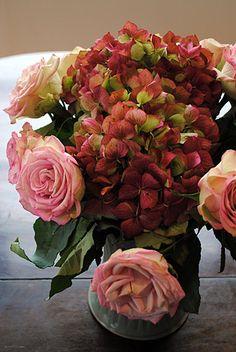 Marvelous Rose & Mauves
