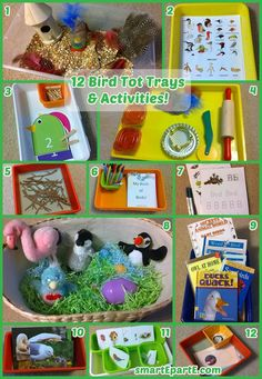 Learn about our feathered friends with bird tot trays! We have a fun dough tray, fun sensory bin, wonderful books, a great printable pack and more!