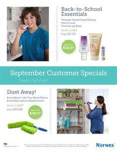 Norwex September 2016 Customer Specials http://www.fastgreenclean.com/2016/09/norwex-september-2016-customer-specials.html