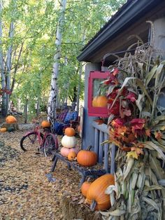 Washington Bed and Breakfasts. Find the Perfect Washington Bed and Breakfast for You with Our Directory of WA Inns, Lodgings and Accommodations. Coeur D'alene Idaho, Motel 6, Pipe Dream, My Town, Dream Job, Autumnal, Frankenstein, Bed And Breakfast, Garden Art