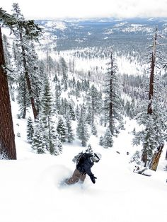 backcountry glades!! #SlopeLife