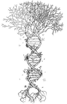 tree of life incorporating DNA structure. Very interesting.