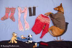 knitting dog nezo art